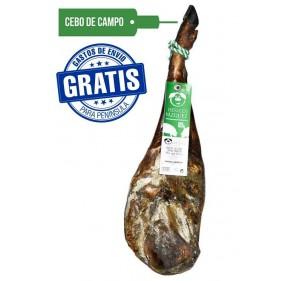 Pork shoulder of fodder of Iberian field