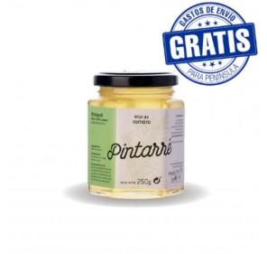 Pintarré. Organic Rosemary Honey. Box of 20 x 250 gr.